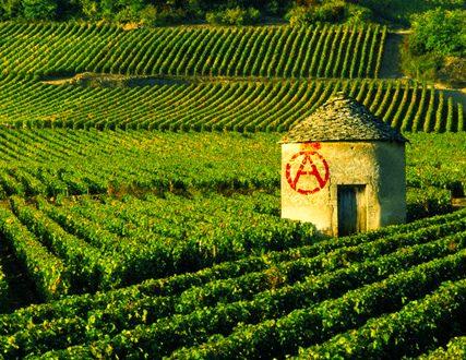 """""""Frammenti di Antropologia Anarchica"""": Facciamo Saltare i Muri"""