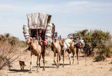 Nomadismo e Confini in Età Contemporanea