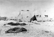 Sand Creek e Wounded Knee – Storia di Due Massacri