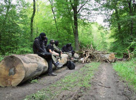 """Hambacher Forst Bleibt!"" – Breve Storia di una Foresta che Resiste"