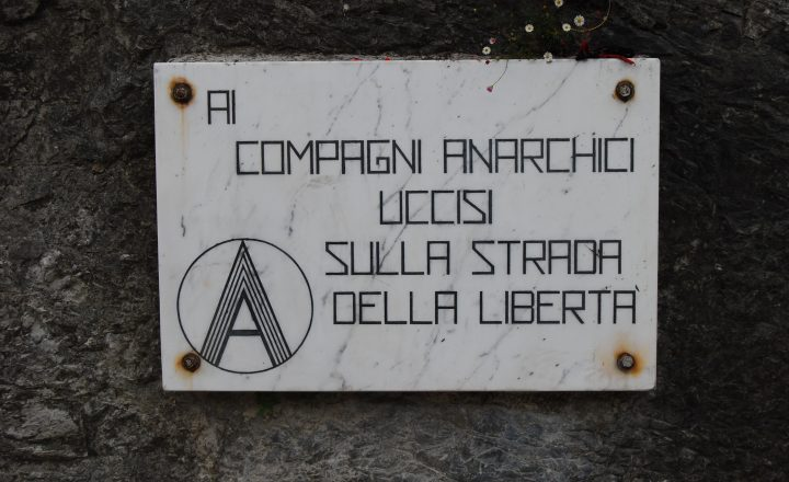 """Nè Democratici nè Dittatoriali: Anarchici"" – E.Malatesta"